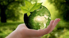 Le greenwashing, ou l'art de faire prendre des vessies polluantes pour des lanternes écologiques